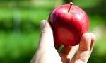 Temptation IELTS speaking Task 1 model answers