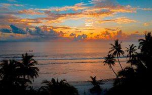 pexels-asad-photo-maldives-3601453X_opt